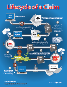 Lifecycle of a Claim Infographic