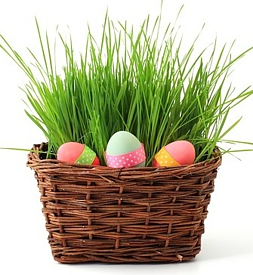 An Easter Egg Basket From VisionWeb