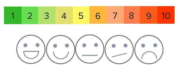 EHR software pain scale