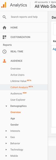 google_analytics_audience
