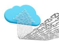 optical management software