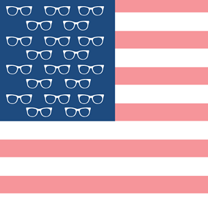 Optical Marketing in the USA blog image